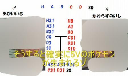 遺伝固定009 のコピー.jpg