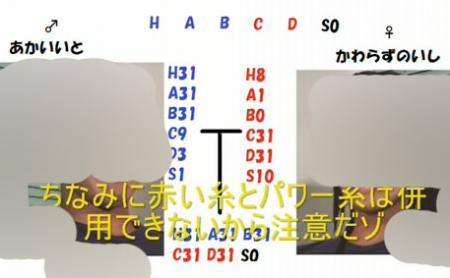 遺伝固定011 のコピー.jpg